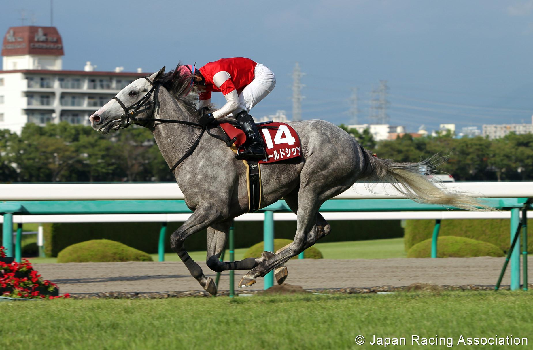 ゴールドシップ、神戸新聞杯(GII)制覇。帆には追い風、前途洋々の2冠航路 © JRA