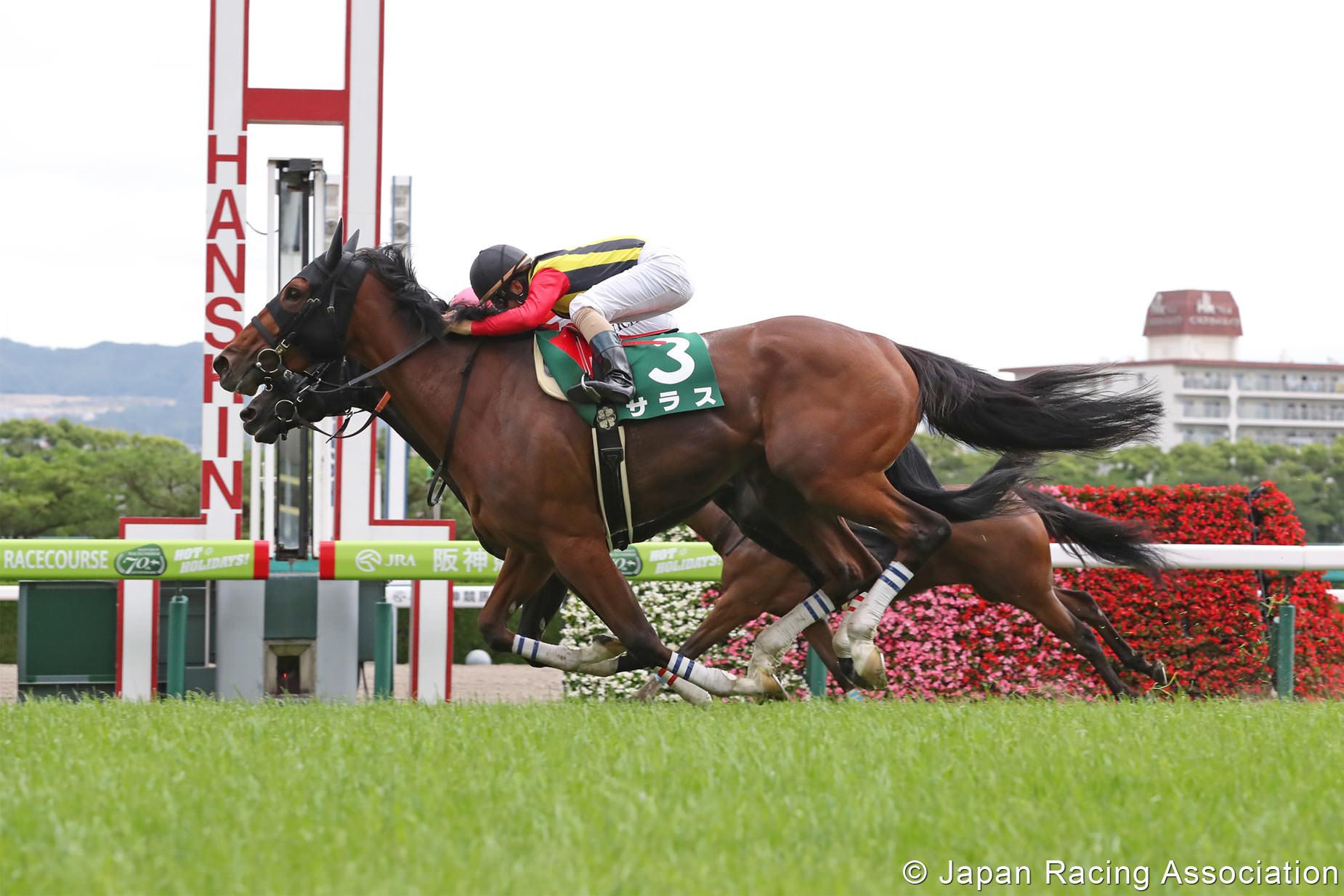 サラス(オルフェーヴル産駒)が後方からの大外一気強襲でマーメイドS(GIII)を制して、初重賞制覇 © JRA