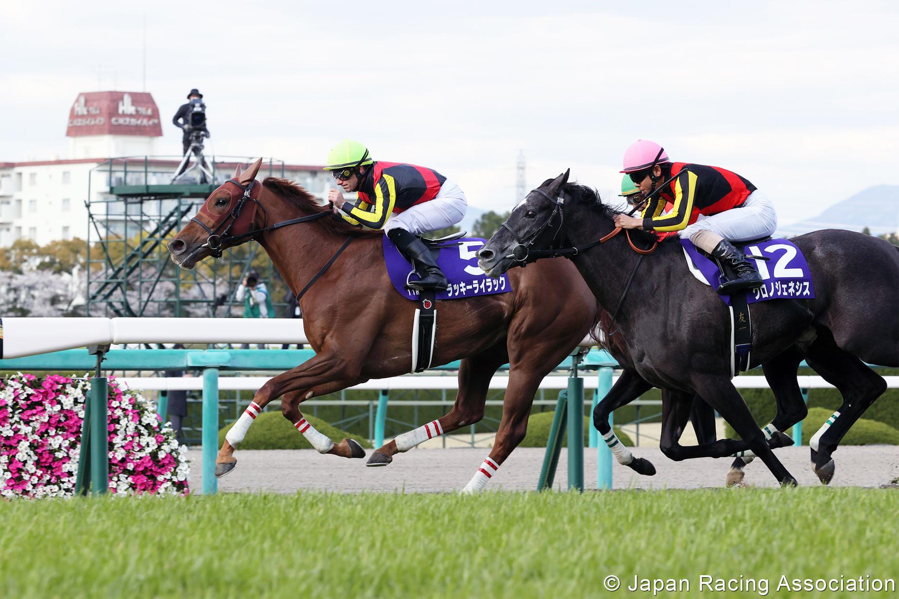 ラッキーライラックが大阪杯(GI)制覇で3っつめのGI タイトルを手中に © JRA