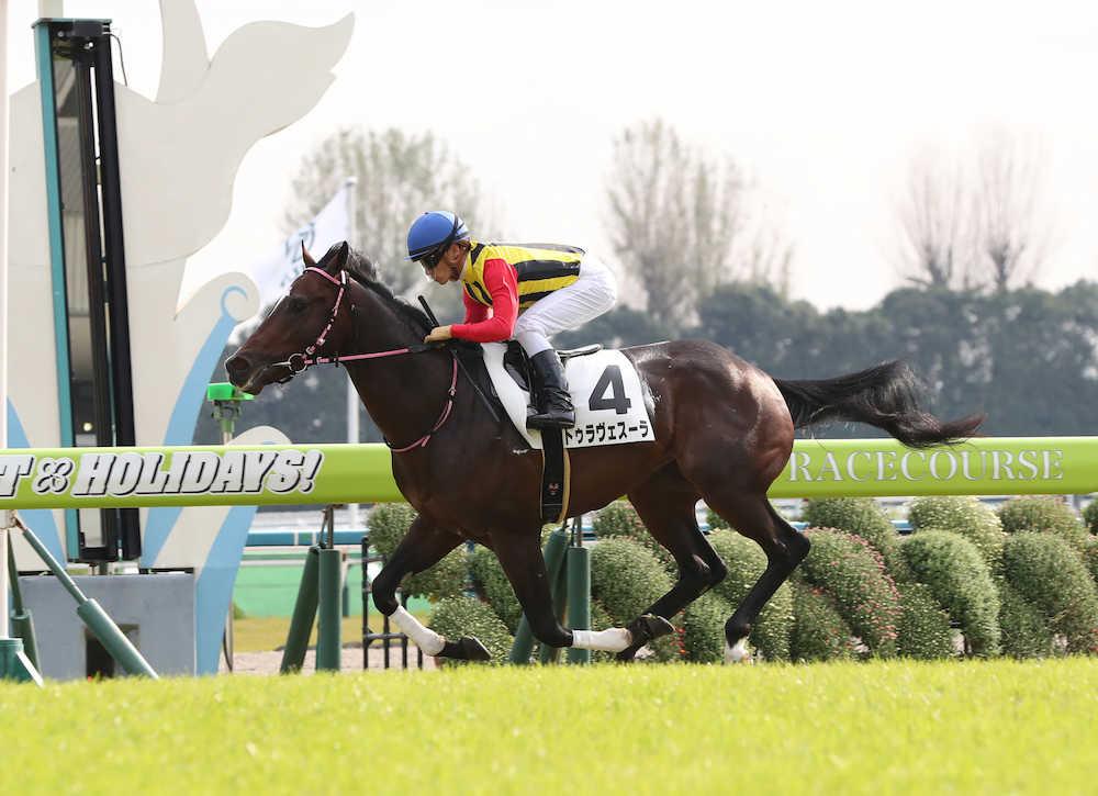 ドリームジャーニー産駒、トゥラヴェスーラが新馬戦を勝利 © スポニチ
