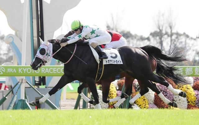 トオヤリトセイト(ドリームジャーニー産駒)が新馬戦を勝利 © スポーツ報知