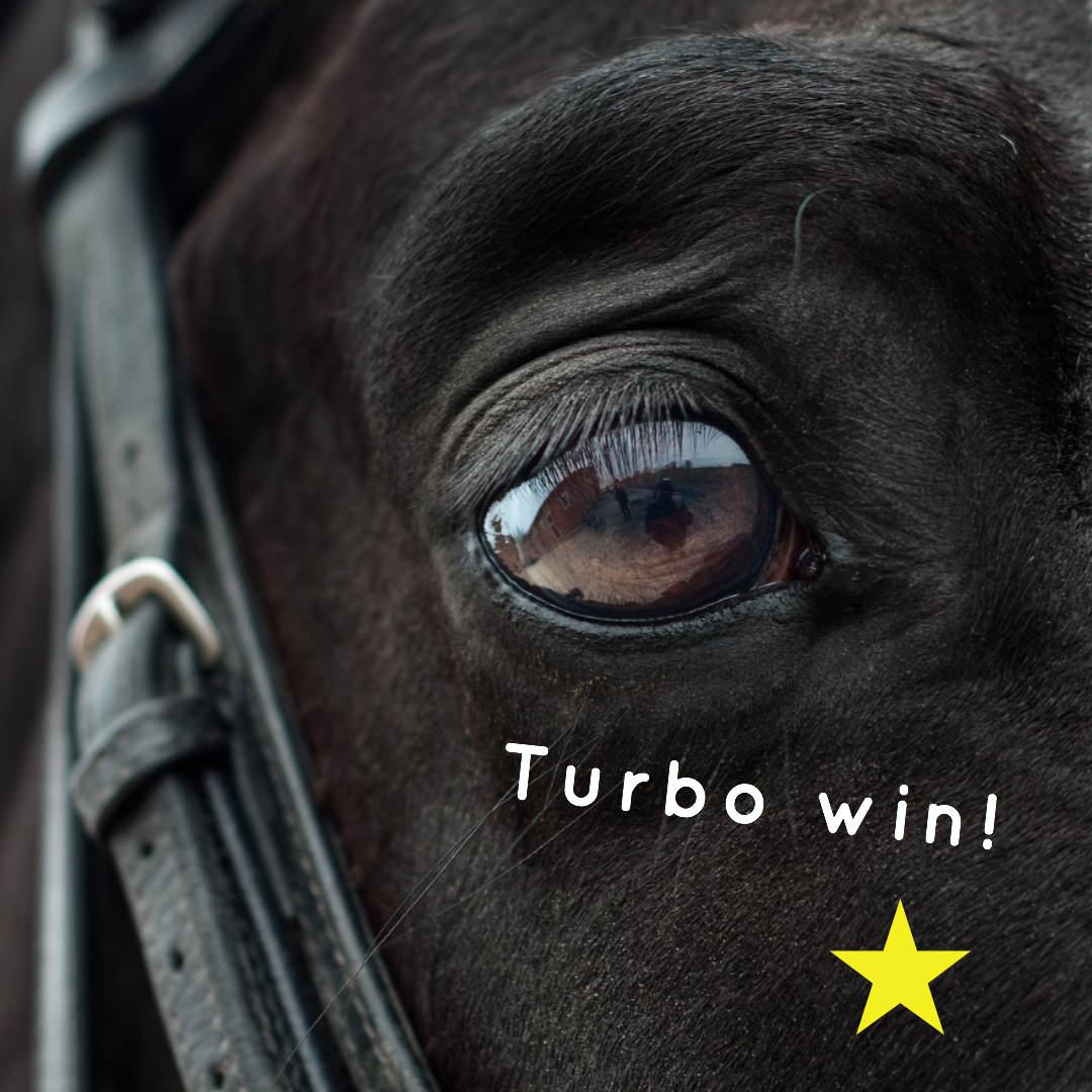 トゥルボー(オルフェーヴル産駒)が激戦を制して初勝利