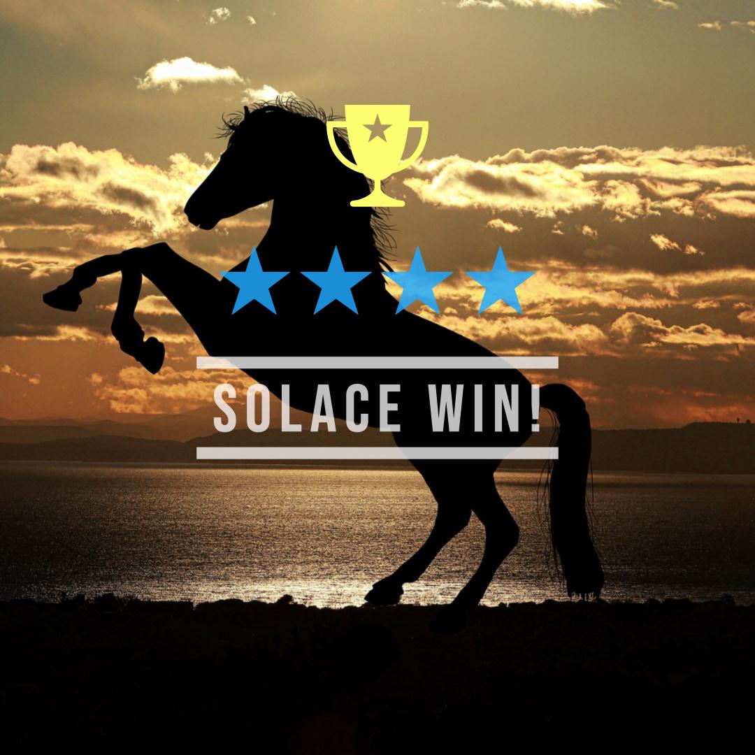 サラス(オルフェーヴル産駒)が後方からの大外一気強襲でマーメイドS(GIII)を制して、初重賞制覇