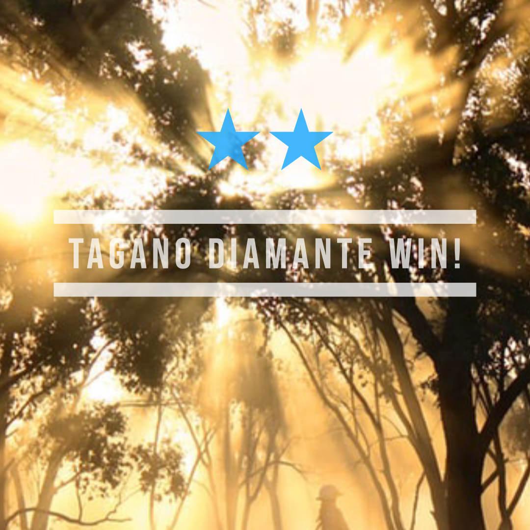 タガノディアマンテ(オルフェーヴル産駒)が力の違いを見せつけ万葉S を制覇