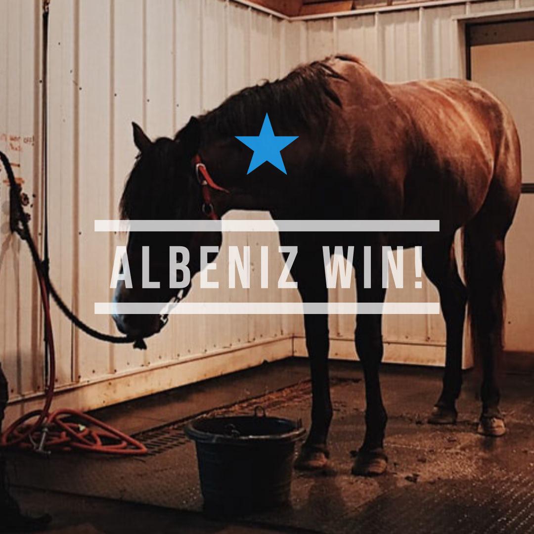 アルベニス(オルフェーヴル産駒)が、直線脚を伸ばして中央再登録初戦を快勝