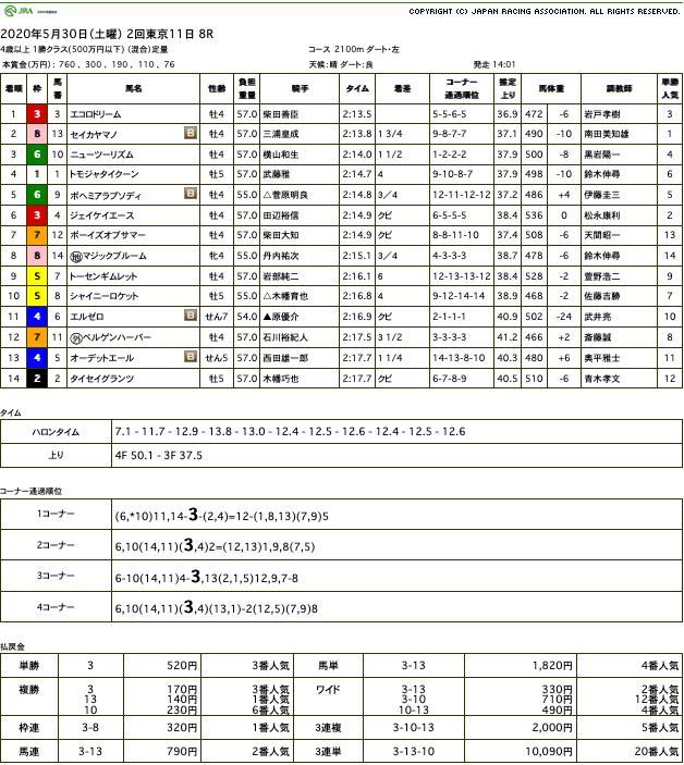 エコロドリーム(ドリームジャーニー産駒)が直線楽に抜け出して2勝目