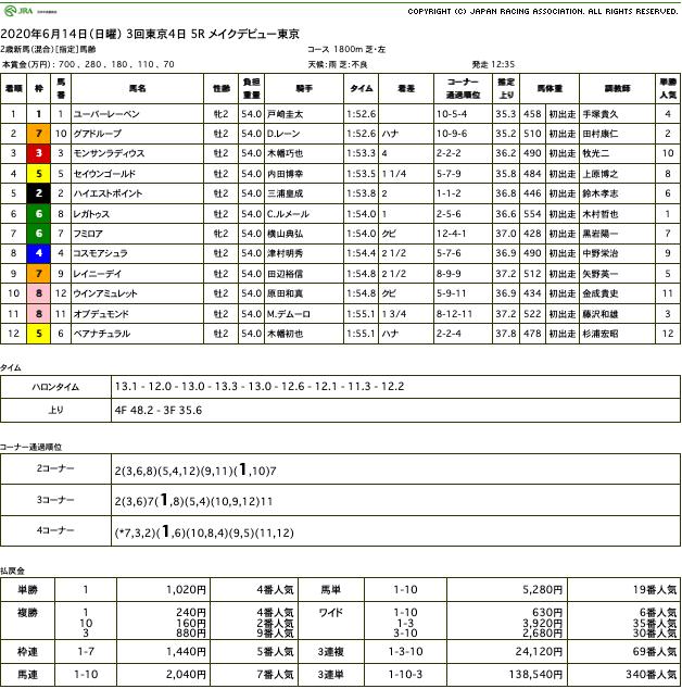 ユーバーレーベン(ゴールドシップ産駒)が不良馬場に怯むことなくデビュー戦勝利