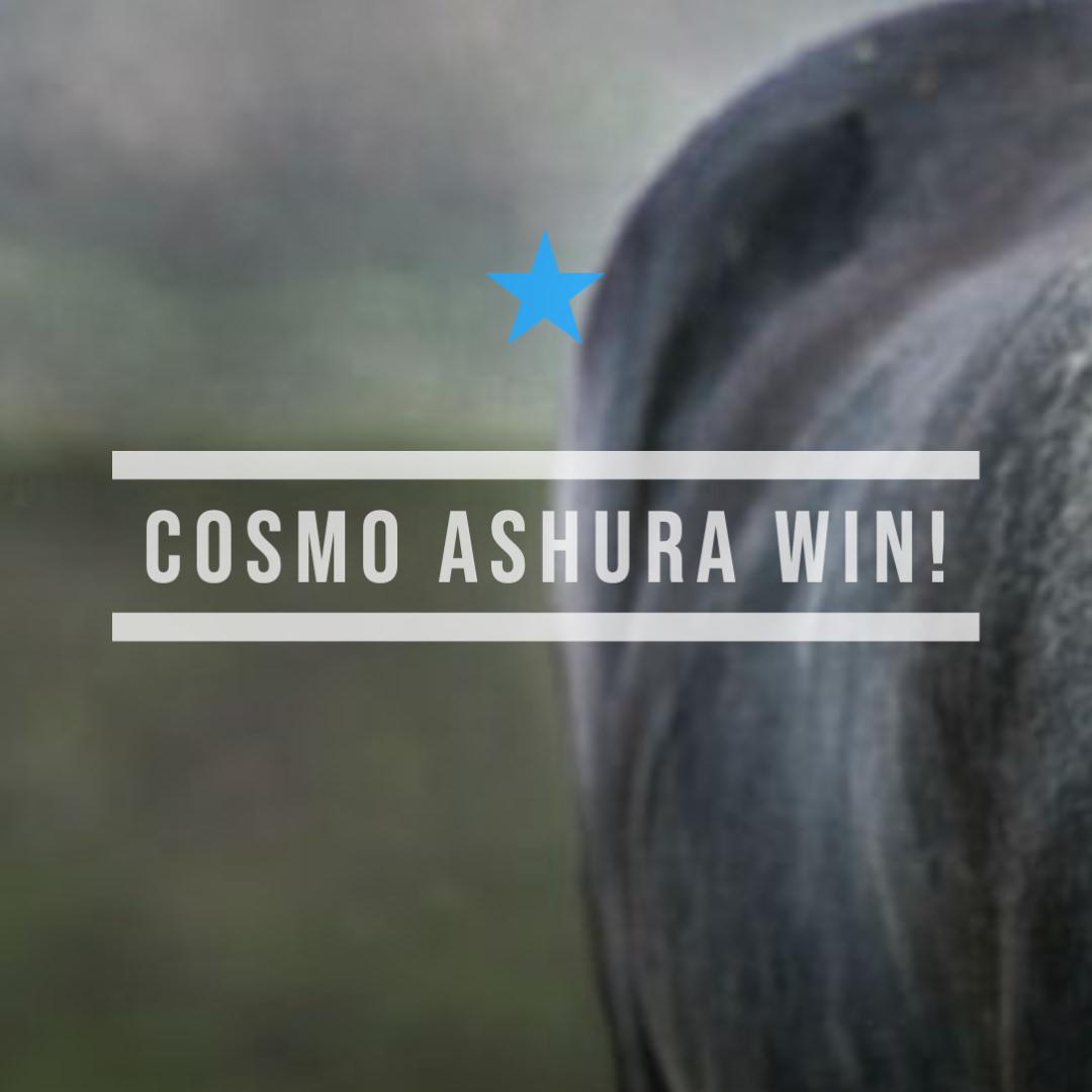 コスモアシュラ(ゴールドシップ産駒)がひとまくりからの押し切りで初勝利