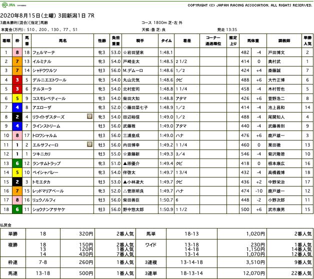 フェルマーテ(ゴールドシップ産駒)が力の違いを見せて初勝利