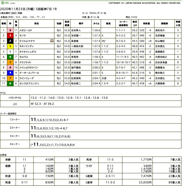 メガゴールド(ゴールドシップ産駒)が直線突き放して初勝利