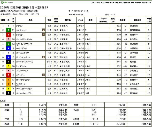 テンピン(メジロマックイーン ひ孫世代、母プリティカポレイ)が直線悠々と抜け出し2勝目