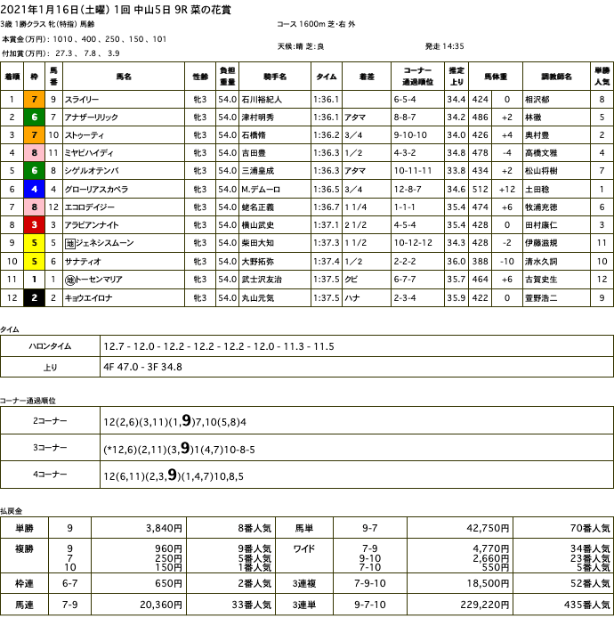 スライリー(オルフェーヴル産駒)が好位からゴール前抜け出し2勝目