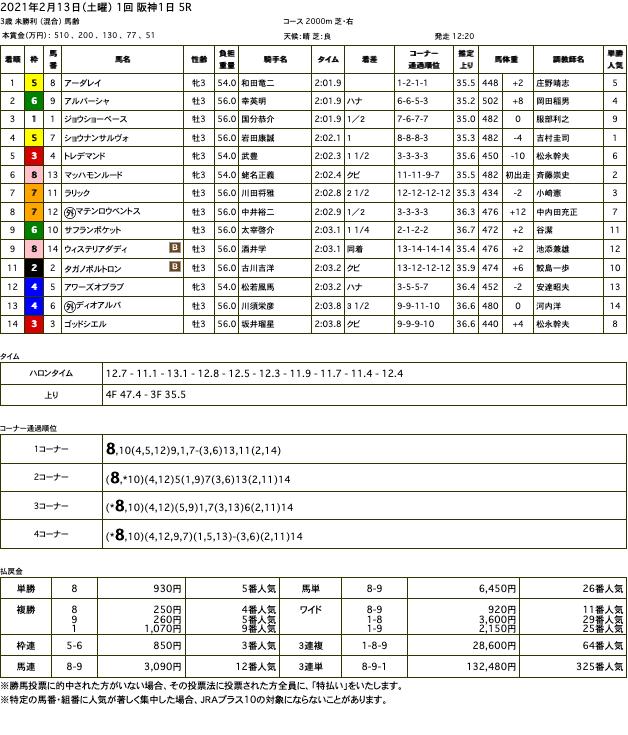 アーダレイ(オルフェーヴル産駒)がハナ差凌いで初勝利