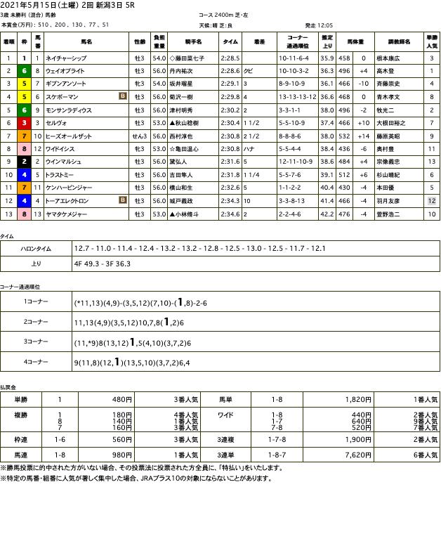 ネイチャーシップ(ゴールドシップ産駒)が直線での競り合い制して初勝利