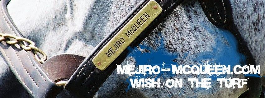 本日4月3日は、我らがメジロマックイーンの誕生日で命日になります