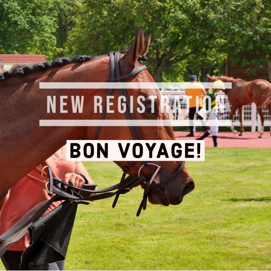 バンフィエルド(オルフェーヴル産駒)が新規馬名登録