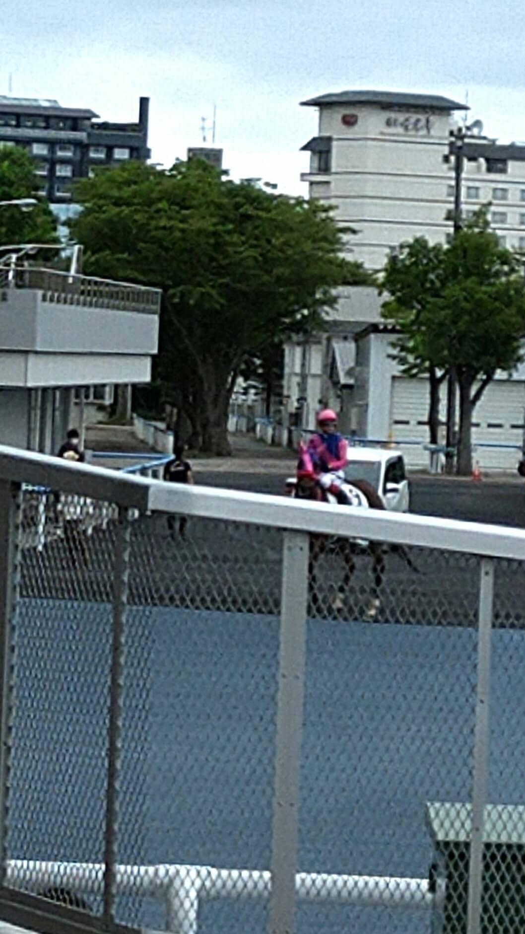 メイショウオニユリ(ドリームジャーニー孫世代 母ヒガシドリーム)が未勝利からの連勝で2勝目 © maki さん