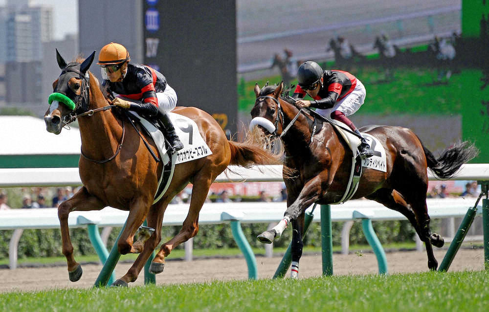 ホウオウピースフル(オルフェーヴル産駒)が新馬勝ち © スポニチ