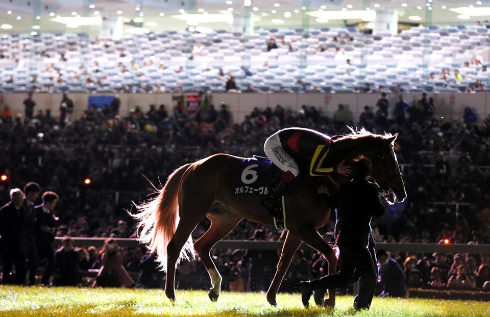 オルフェーヴル © 朝日新聞