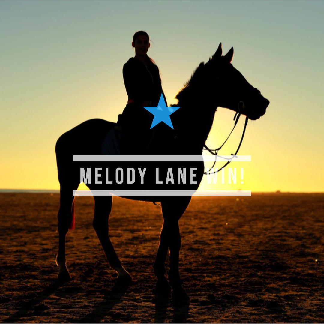 メロディーレーン(オルフェーヴル産駒)が最小馬体重優勝記録を更新しての初勝利